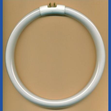 FLEXMAGby KaindlLeuchtstoffröhre Daylight rund – als Ersatz für Lupenleuchte