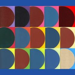 rictools Haft-Schleifscheiben Mix-Sortiment Ø 300 mm