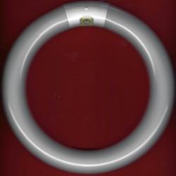 KaindlLeuchtstoffröhre Daylight rund groß – als Ersatz für Lupenleuchte