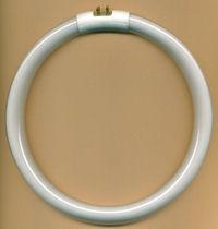 Leuchtstoffröhre Daylight rund