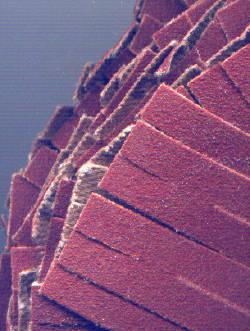 rictools Schleifstern K240 fein – Detail